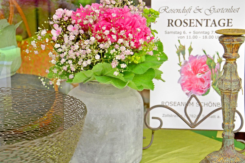 Roseanum_Impressionen